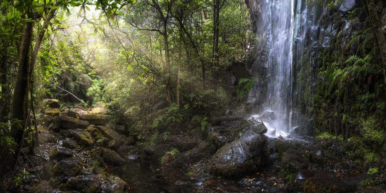Leinwandbild - Sonnenlicht scheint auf Wasserfall im Lorbeerwald