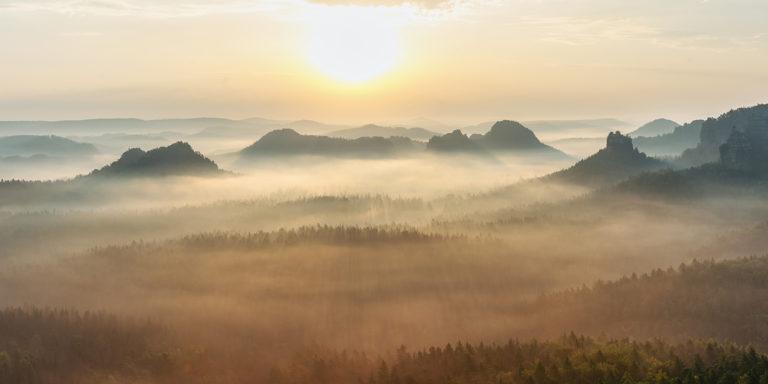 Leinwandbild - Sonnenaufgang im Nebelwald