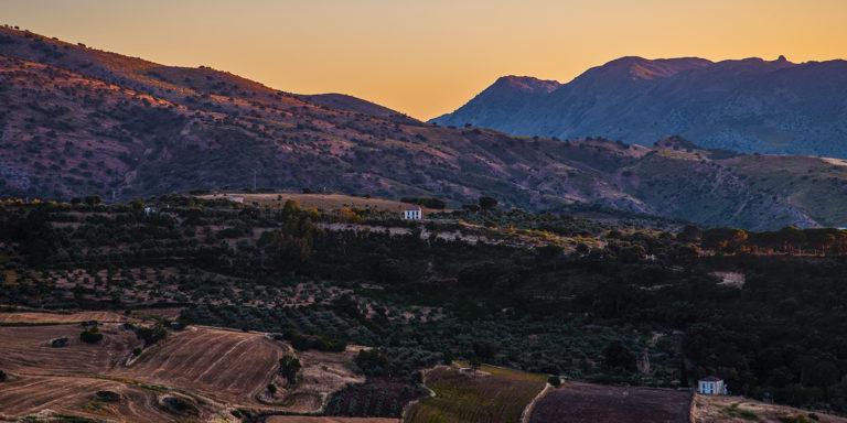 Leinwandbild - Dämmerung der Felder in Andalusien