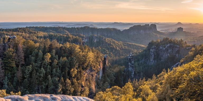 Leinwandbild - Lichter und Schatten in Waldschlucht im Elbsandsteingebirge