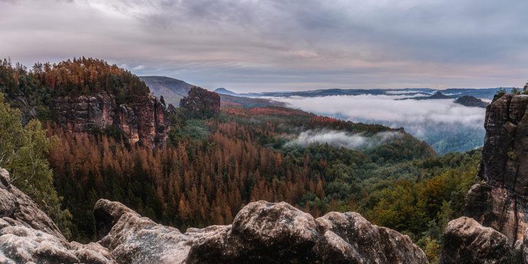Leinwandbild - Magischer Waldblick im Elbsandsteingebirge