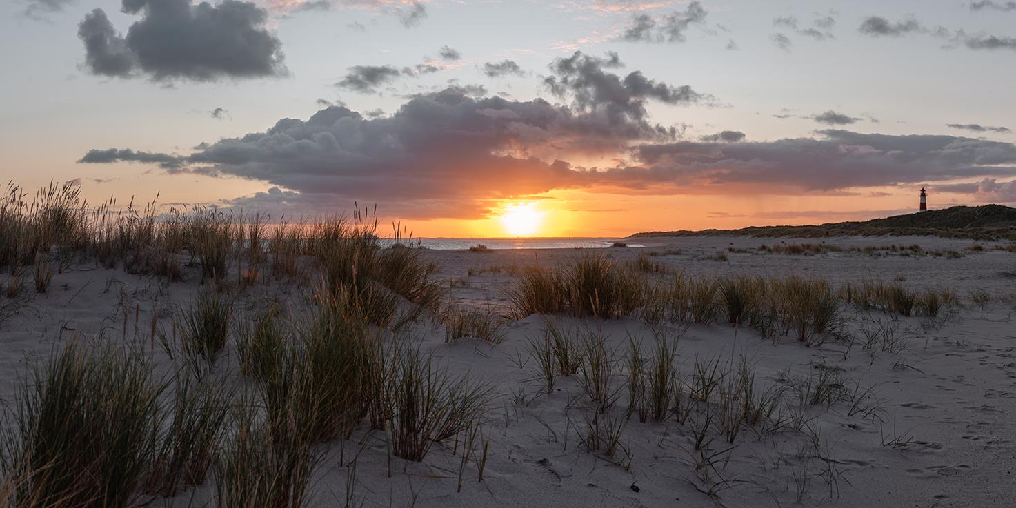 Leinwandbild - Sonnenaufgang in Düne auf Sylt