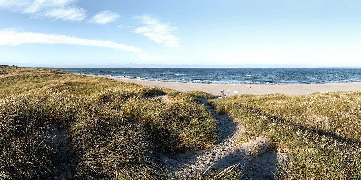 Leinwandbild - Dünenpfad auf Sylt führt zum Meer